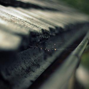 rain-gutter-473845_1920